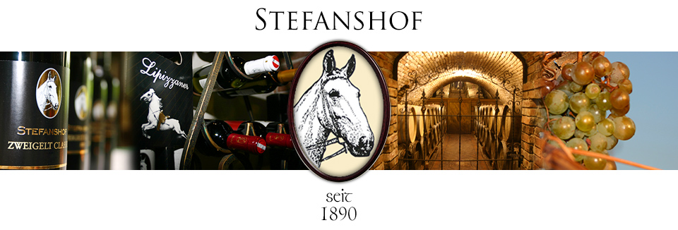 Logo Stefanshof